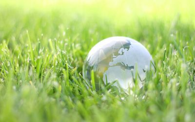 Tackling the dilemma of local actions and planetary boundaries