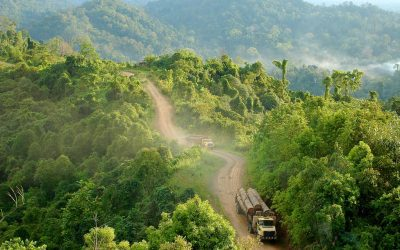 South-south cooperation for healthy, productive and sustainably managed forests