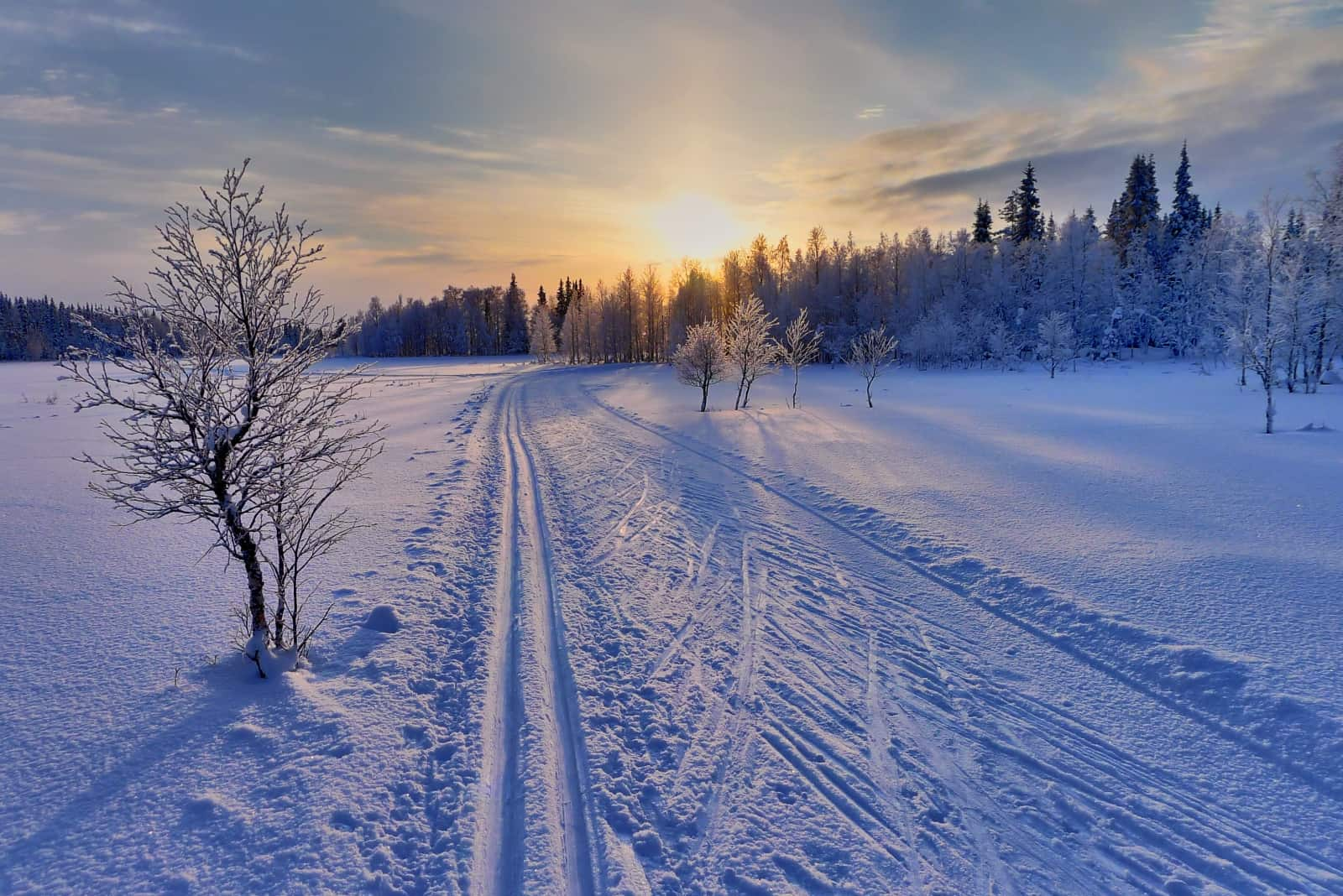 Cross country ski track in Ruka, Finland Photo Credit: © Timo Newton-Syms via Flickr