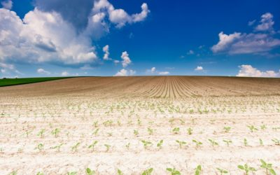Cooperation needed! The case of drought management in Austria