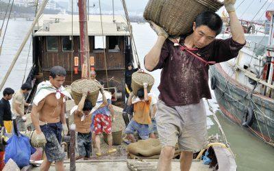 """Ecocivilization"":  balancing society and ecology in Chinese coastal fishing communities"