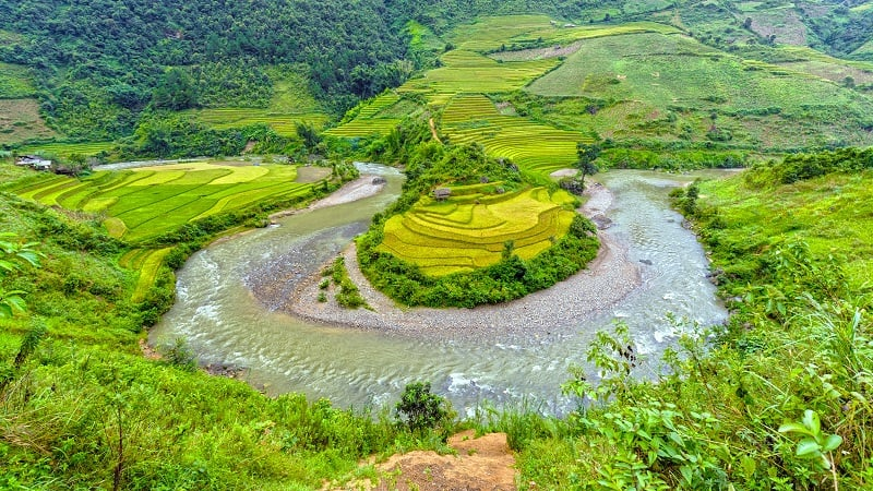 Cost effective solutions to manage nutrient pollution in the Yangtze