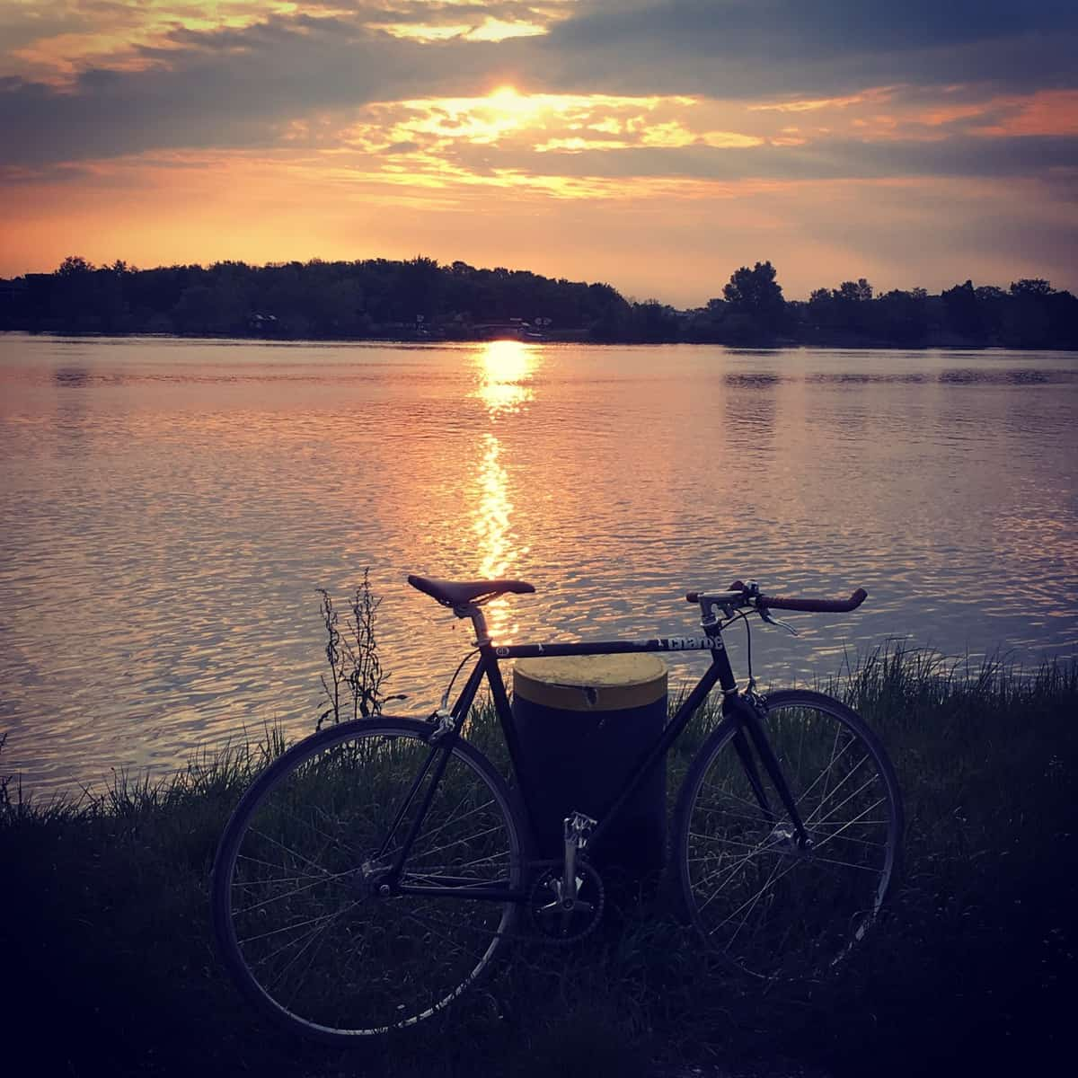 For some staff members, one side benefit of cycling to IIASAis the beautiful sunrise along the Danube River ©Michaela Rossini | IIASA